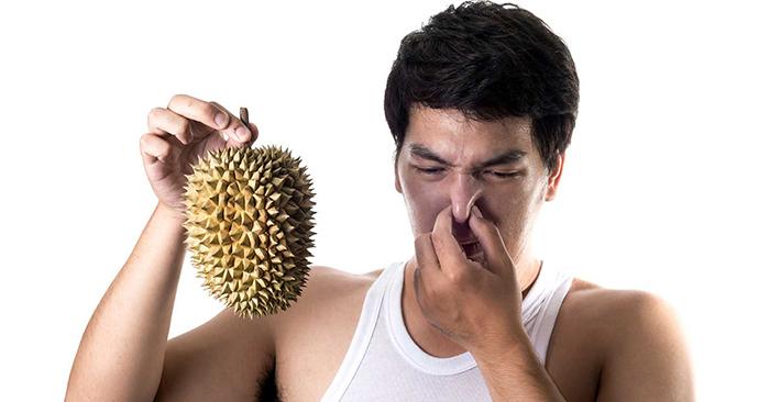 Chú chó bịt mũi khi ngửi thấy mùi sầu riêng, vì sao mùi sầu riêng lại bị coi là