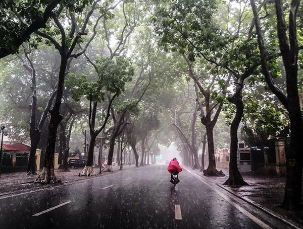 Dự báo thời tiết ngày 7/9: Mưa dông cục bộ bao trùm cả nước, đề phòng mưa đá ở khu vực Tây nguyên và các tỉnh phía Nam