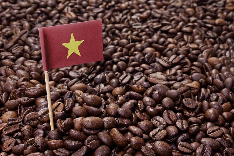 Giá cà phê hôm nay 1/9: Biến động trái chiều ở cả trong nước và thế giới