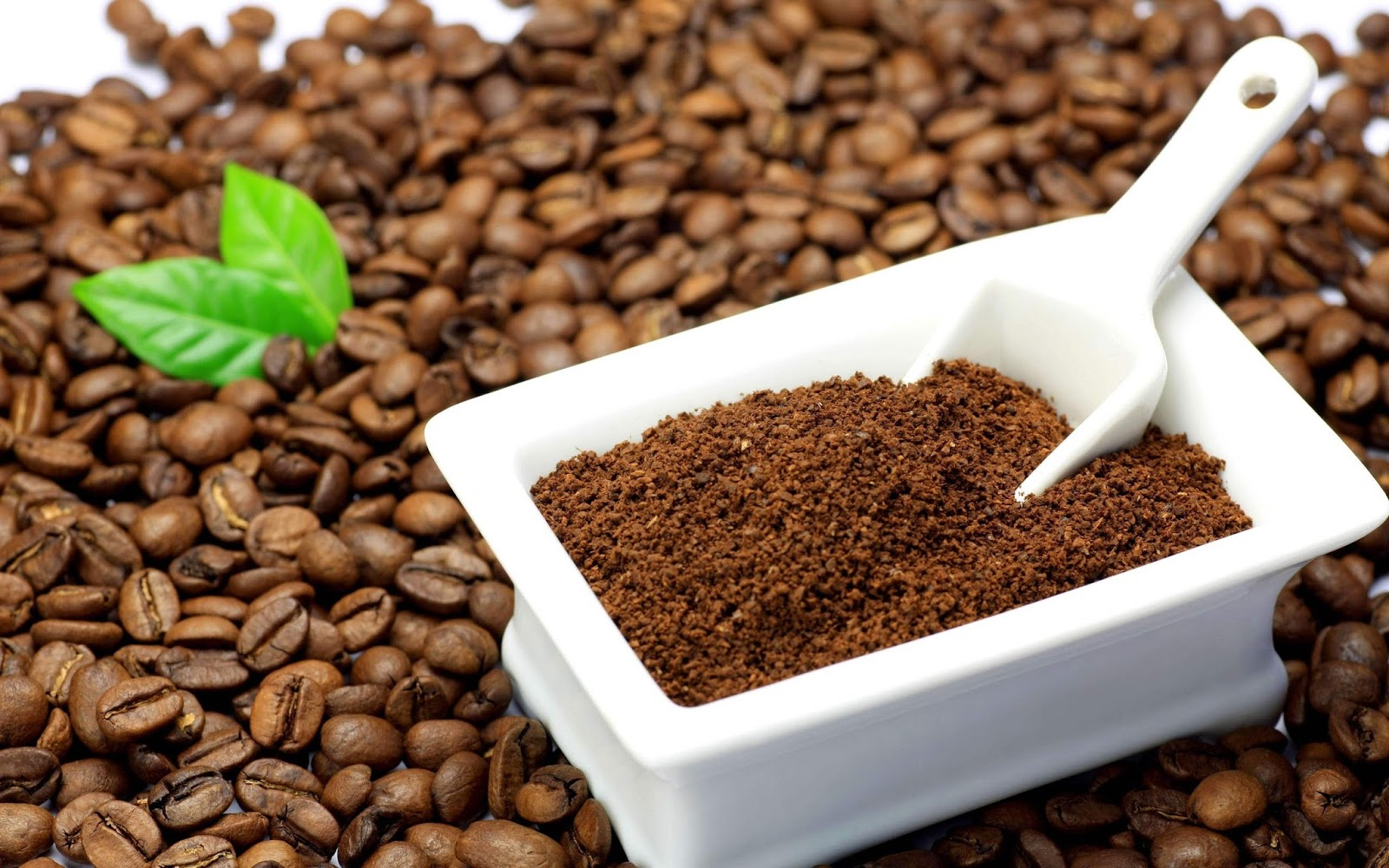Giá cà phê hôm nay 25/9: Arabica tăng vọt kéo giới đầu cơ tập trung về sàn New York