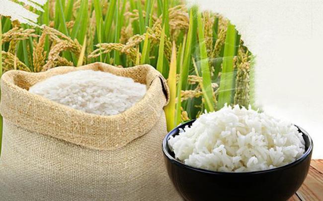 Giá lúa gạo hôm nay 9/10: Biến động tương đối ổn định