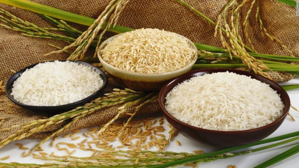 Giá lúa gạo hôm nay: Lúa Hè Thu duy trì ổn định, không biến động