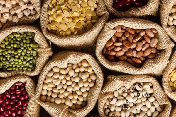 Giá ngũ cốc hôm nay 1/10: Đậu tương tăng trở lại