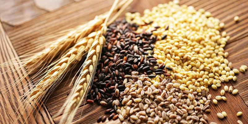 Giá ngũ cốc hôm nay 17/10: Đậu tương và ngô quay đầu tăng