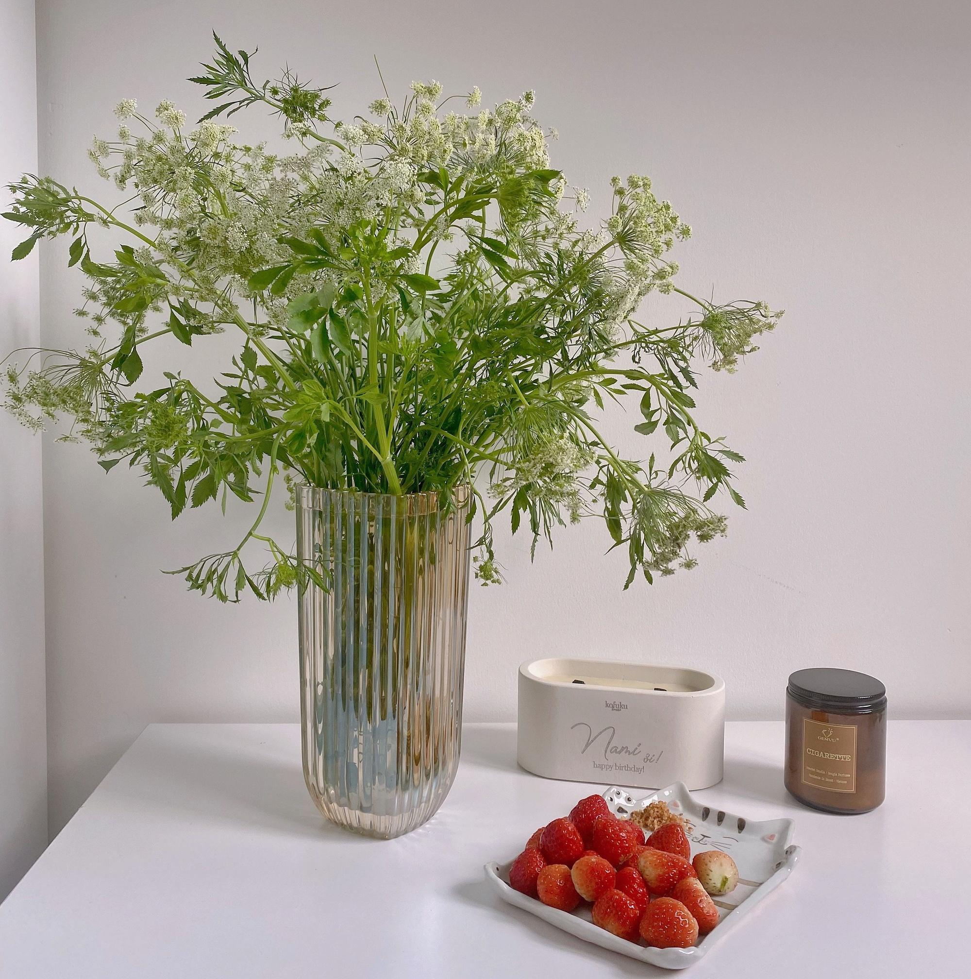 Hoa cà rốt 'mới, lạ' khiến chị em Sài thành mê mẩn, mua về cắm