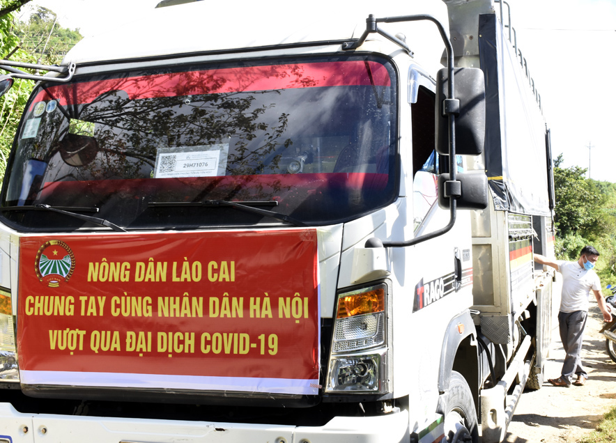 Nông dân Lào Cai hỗ trợ Hà Nội hơn 30 tấn nông sản