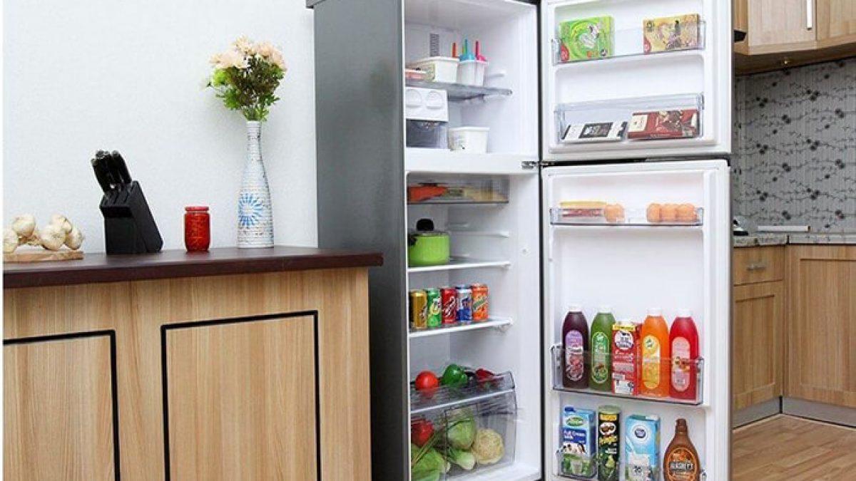 Tủ lạnh 2 cánh nên chọn loại nào tốt nhất?