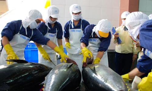 Việt Nam vượt qua Thái Lan trở thành nguồn cung cá ngừ lớn nhất cho Israel